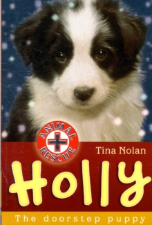 Holly : The Doorstep Puppy, Paperback Book