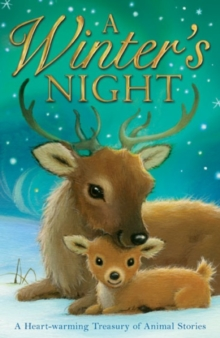 A Winter's Night, Paperback Book