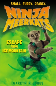 Escape from Ice Mountain, Paperback Book