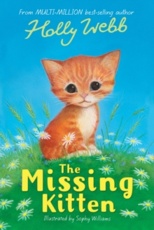 The Missing Kitten, Paperback Book