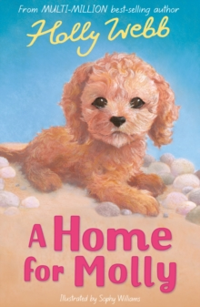 A Home for Molly, Paperback Book