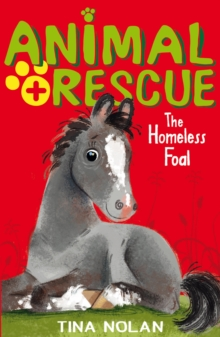 The Homeless Foal, Paperback Book