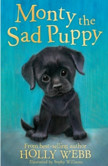 Monty the Sad Puppy, Paperback Book