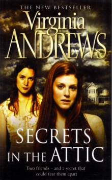Secrets in the Attic, Paperback Book