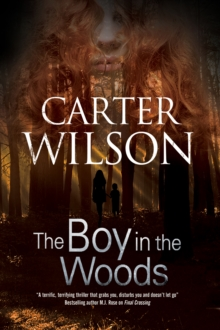The Boy in the Woods, Paperback / softback Book