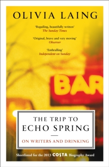 The Trip to Echo Spring : On Writers and Drinking, Paperback Book