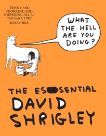 What the Hell are You Doing?: the Essential David Shrigley, Paperback Book
