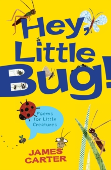 Hey Little Bug : Poems for Little Creatures, Paperback Book