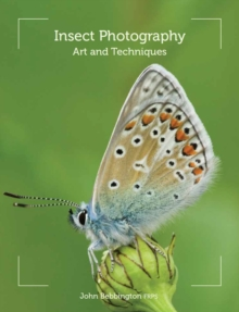 Insect Photography : Art and Techniques, Paperback / softback Book