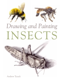 Drawing and Painting Insects, Paperback Book