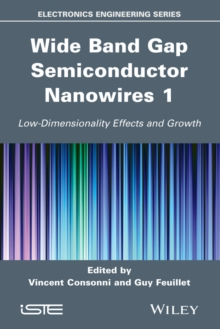 Wide Band Gap Semiconductor Nanowires 1 : Low-Dimensionality Effects and Growth, Hardback Book