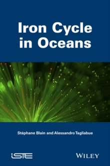 Iron Cycle in Oceans, Paperback / softback Book