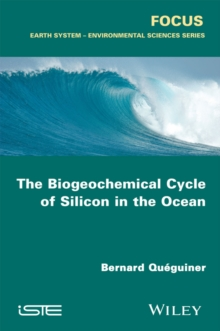 The Biogeochemical Cycle of Silicon in the Ocean, Paperback / softback Book