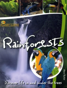Rainforests : Discover Life in the Trees, Paperback / softback Book