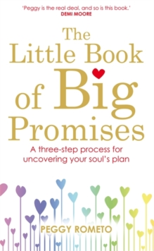 The Little Book of Big Promises : A Three-Step Process for Uncovering Your Soul's Plan, Paperback Book