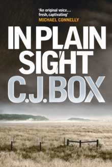 In Plain Sight, Paperback Book