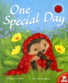 One Special Day, Paperback Book