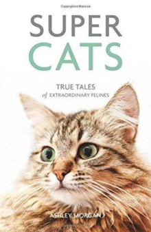 Super Cats : True Tales of Extraordinary Felines, Paperback / softback Book
