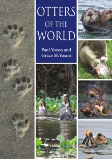 Otters of the World, Paperback / softback Book