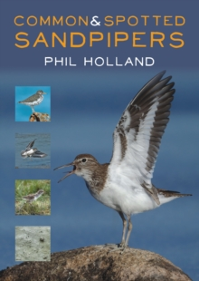 Common and Spotted Sandpipers, Paperback Book