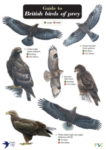 Guide to British Birds of Prey, Fold-out book or chart Book