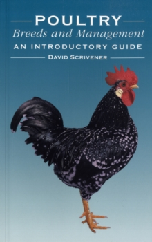 Poultry Breeds and Management : An Introductory Guide, Paperback Book
