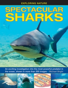 Exploring Nature: Spectacular Sharks, Hardback Book