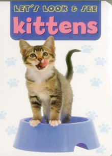 Let's Look & See: Kittens, Board book Book