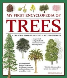 My First Encyclopedia of Trees (Giant Size), Paperback / softback Book