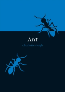 Ant, Paperback Book