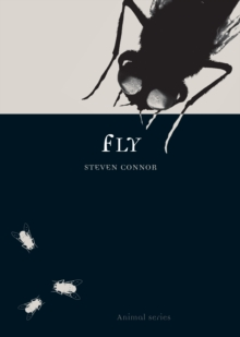 Fly, Paperback / softback Book
