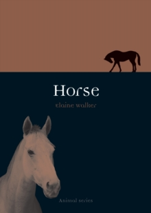 Horse, Paperback Book