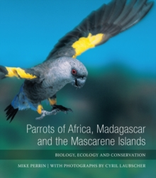 Parrots of Africa, Madagascar and the Mascarene Islands : Biology, Ecology and Conservation, Hardback Book