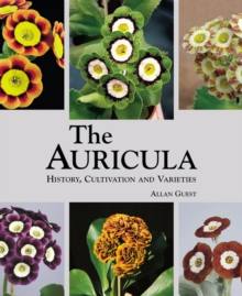 The Auricula : History, Cultivation and Varieties, Hardback Book
