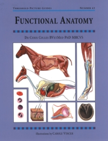 Functional Anatomy, Paperback / softback Book