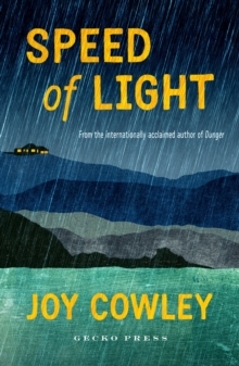 Speed of Light, Paperback Book