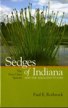 Sedges of Indiana and the Adjacent States : The Non-Carex Species, Hardback Book