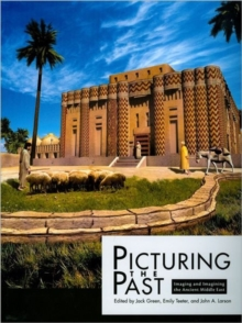 Picturing the Past, Paperback Book