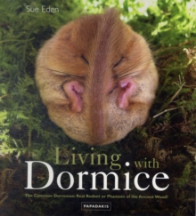 Living with Dormice : The Common Dormouse, Real Rodent or Phantom of the Ancient Wood, Paperback Book