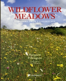 Wildflower Meadows : Survivors from a Golden Age, Paperback Book