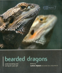 Bearded Dragon - Pet Expert, Paperback Book