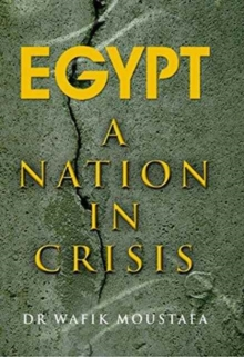 Egypt : A Nation in Crisis, Paperback / softback Book