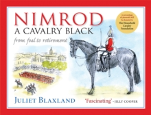 Nimrod: A Cavalry Black : From Foal to Retirement, Paperback / softback Book