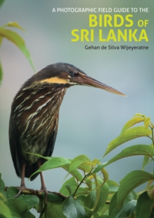 Photographic Field Guide to the Birds of Sri Lanka, Paperback / softback Book