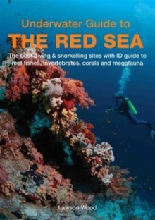 Underwater Guide to the Red Sea, Paperback Book
