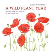 A Wild Plant Year : The History, Folklore and Uses of Britain's Flora, Paperback / softback Book