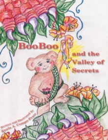 Booboo and the Valley of Secrets, Hardback Book