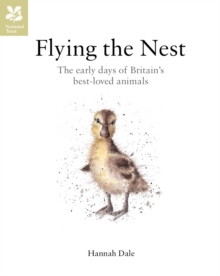 Flying the Nest : The early days of Britain's best-loved animals, Hardback Book