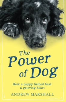 The The Power of Dog : How a Puppy Helped heal a Grieving Heart, Paperback / softback Book