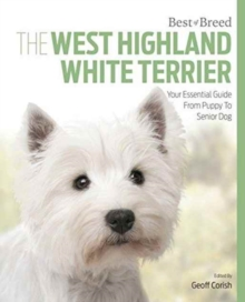 West Highland White Terrier : Best of Breed, Paperback / softback Book